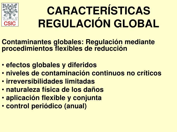 CARACTERÍSTICAS REGULACIÓN GLOBAL