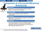 components of a successful mentoring relationship1
