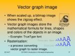 vector graph image