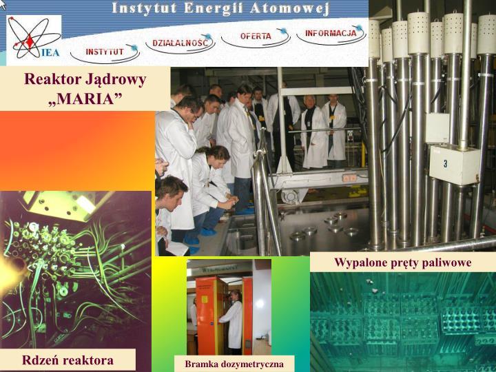Reaktor Jądrowy