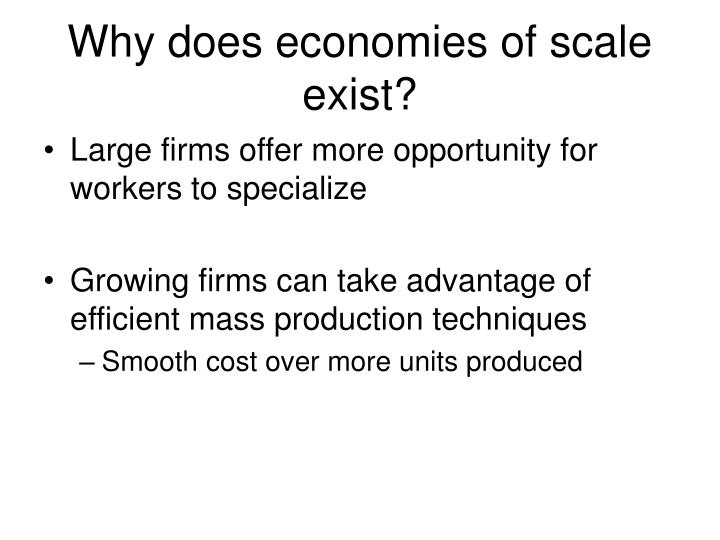 Why does economies of scale exist?