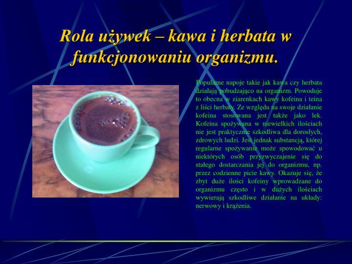 Rola używek – kawa i herbata w funkcjonowaniu organizmu.