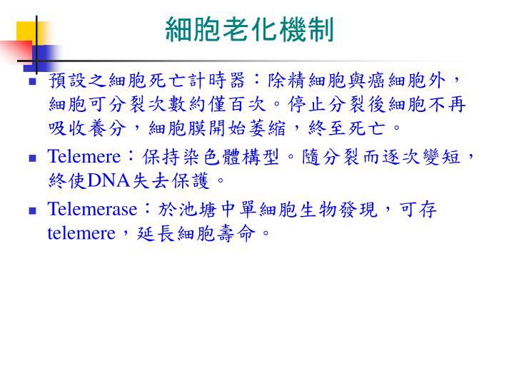 細胞老化機制