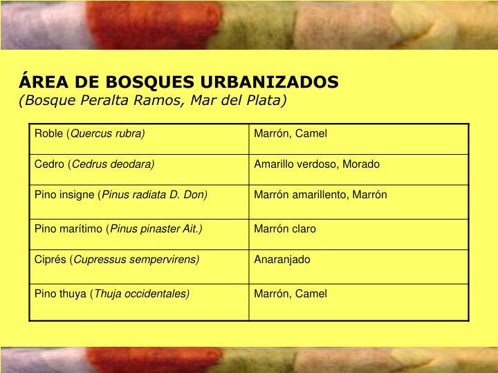 ÁREA DE BOSQUES URBANIZADOS