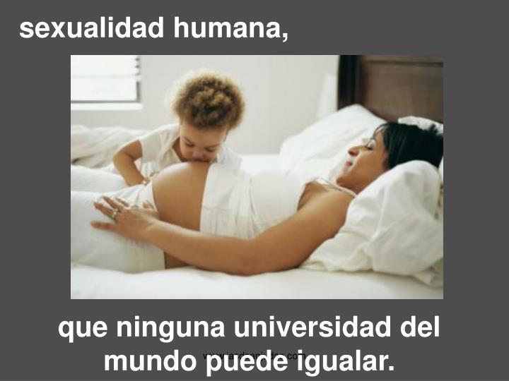 sexualidad humana,