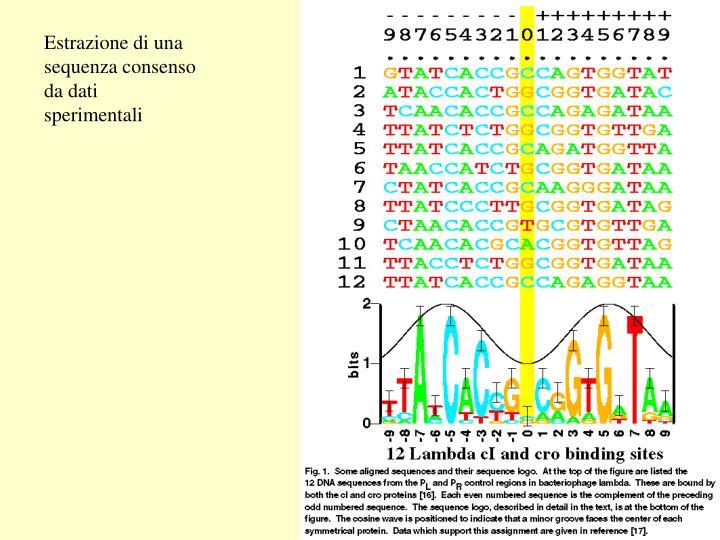 Estrazione di una sequenza consenso da dati sperimentali