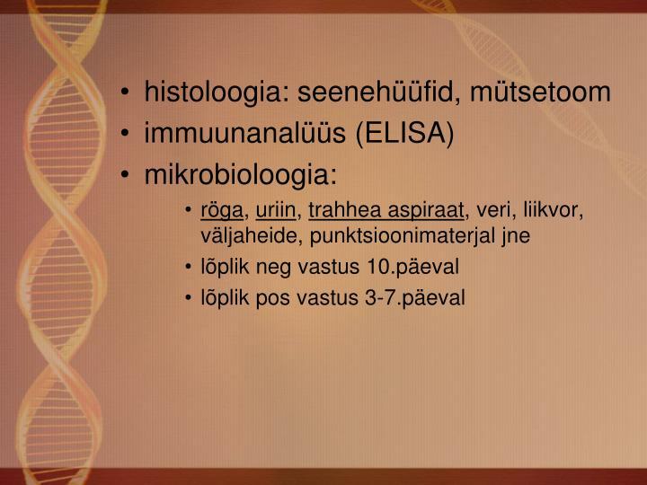 histoloogia: seenehüüfid, mütsetoom