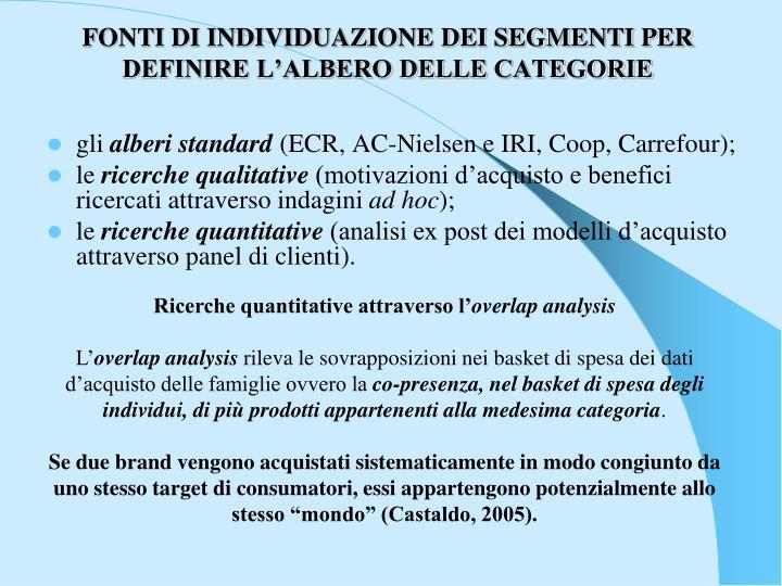 FONTI DI INDIVIDUAZIONE DEI SEGMENTI PER DEFINIRE L'ALBERO DELLE CATEGORIE