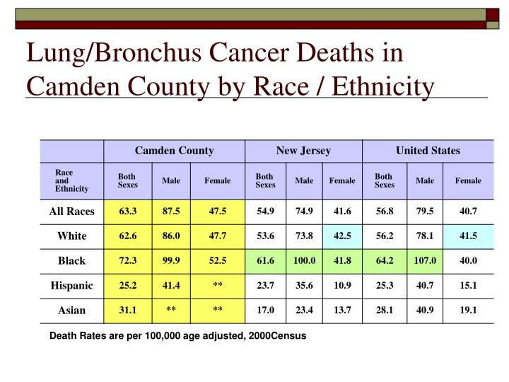 Lung/Bronchus Cancer Deaths in Camden County by Race / Ethnicity