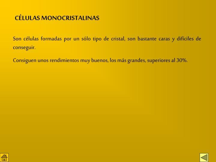 CÉLULAS MONOCRISTALINAS
