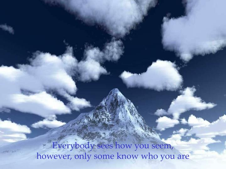 Everybody sees how you seem,