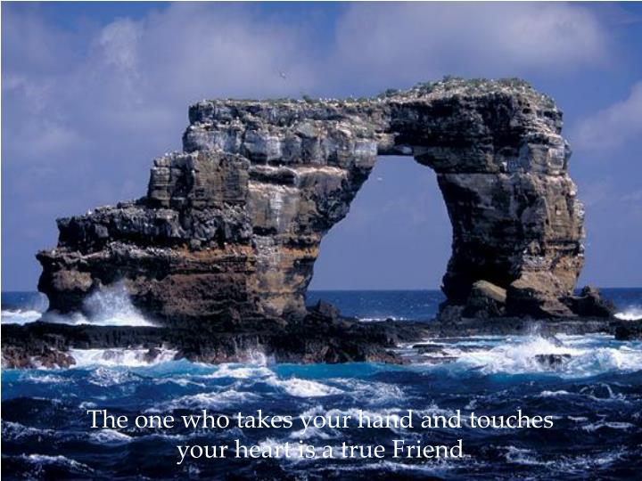 The one who takes your hand and touches your heart is a true Friend