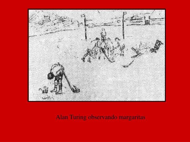 Alan Turing observando margaritas