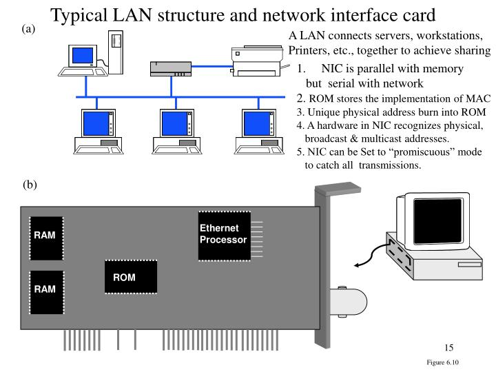 Typical LAN structure and network interface card