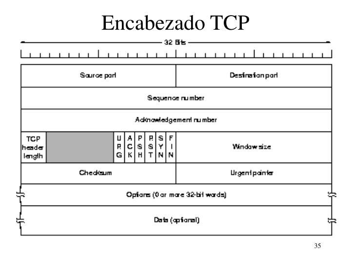 Encabezado TCP