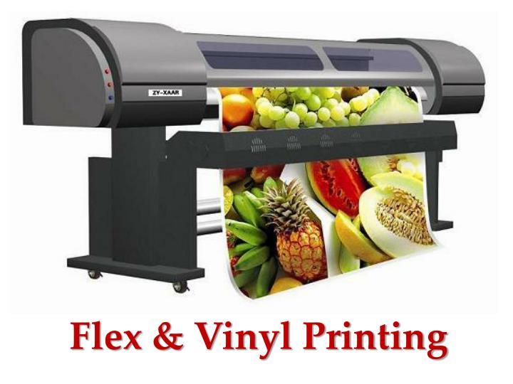 Flex & Vinyl Printing