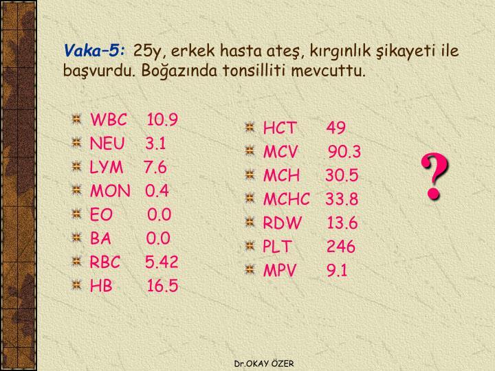 WBC    10.9