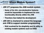which module system