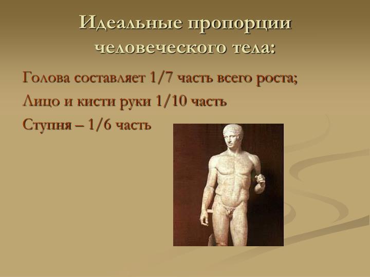 Идеальные пропорции человеческого тела: