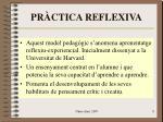 pr ctica reflexiva