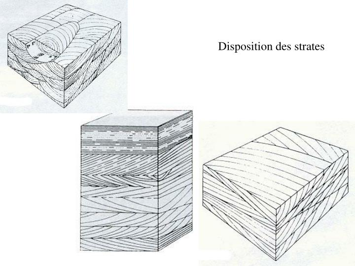 Disposition des strates
