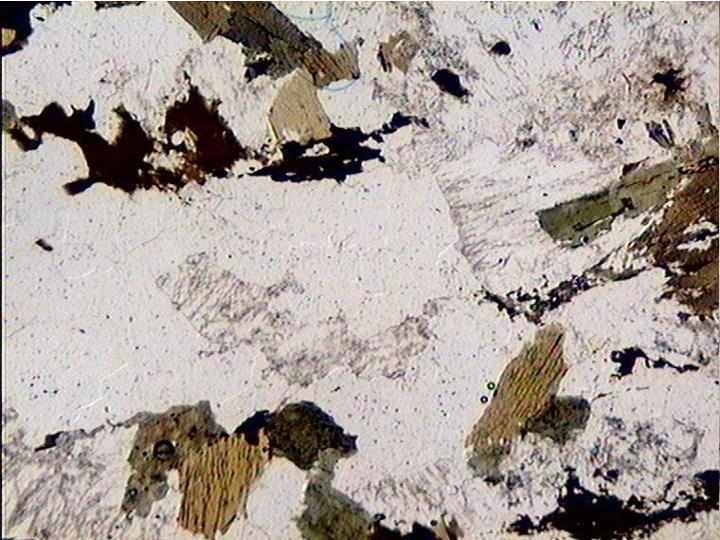 Texture grenue LPNA