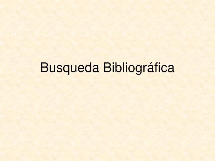 Busqueda Bibliogr