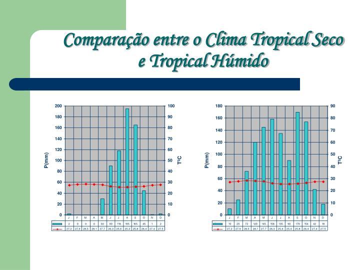 Comparação entre o Clima Tropical Seco
