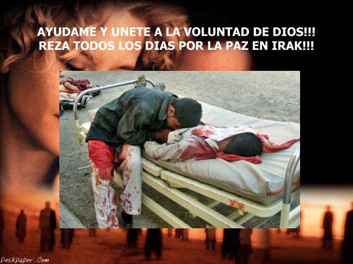 AYUDAME Y UNETE A LA VOLUNTAD DE DIOS!!! REZA TODOS LOS DIAS POR LA PAZ EN IRAK!!!