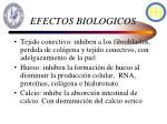 efectos biologicos1