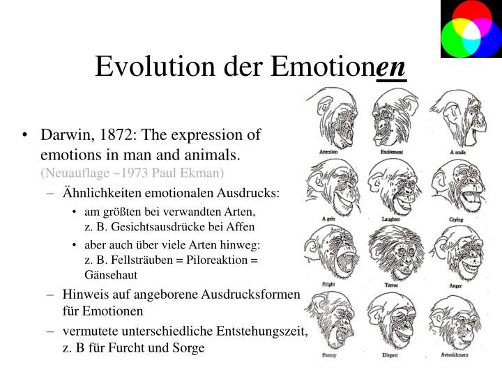 Evolution der Emotion