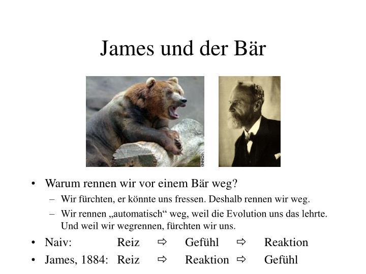 James und der Bär
