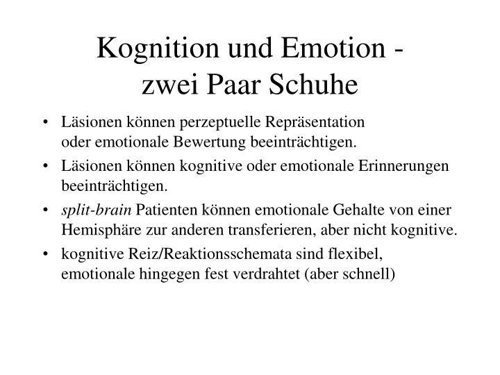Kognition und Emotion -