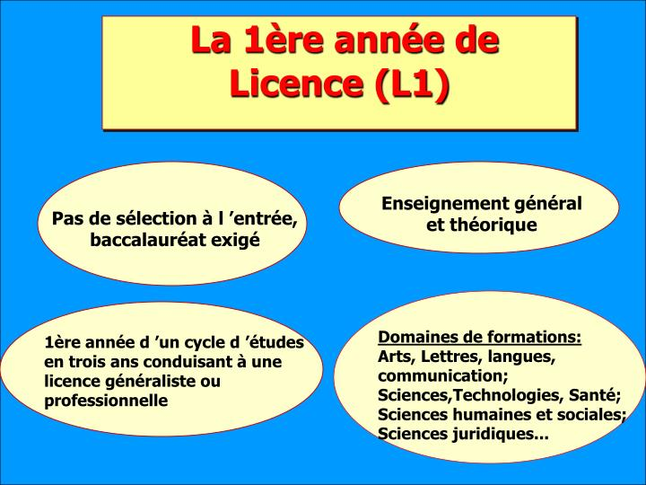La 1ère année de Licence (L1)