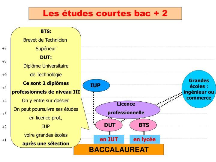 Les études courtes bac + 2