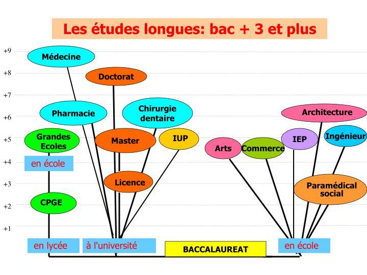 Les études longues: bac + 3 et plus