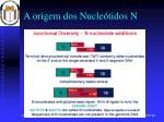 a origem dos nucle tidos n