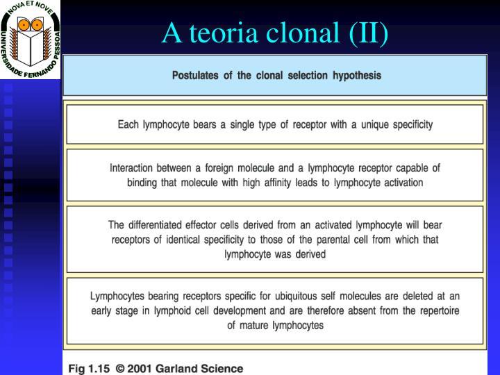A teoria clonal (II)