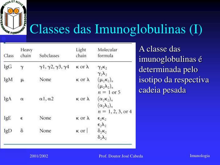 Classes das Imunoglobulinas (I)