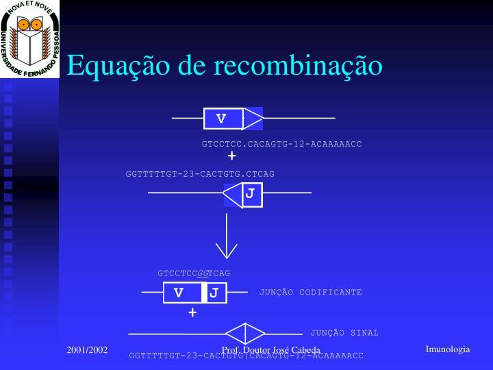 Equação de recombinação