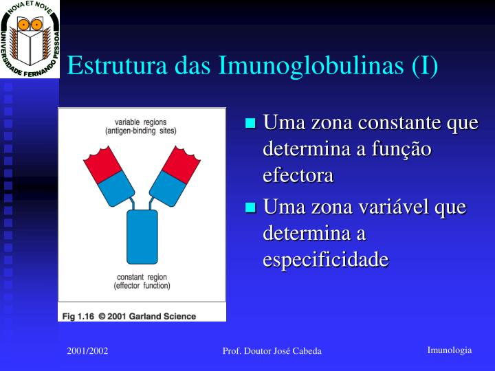 Estrutura das Imunoglobulinas (I)