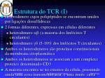 estrutura do tcr i