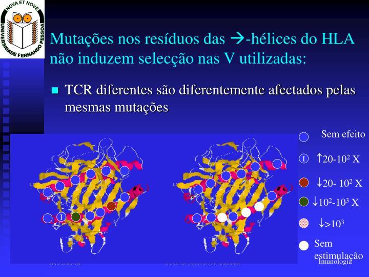 TCR diferentes são diferentemente afectados pelas mesmas mutações
