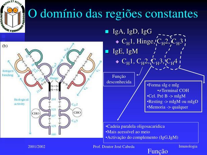 O domínio das regiões constantes