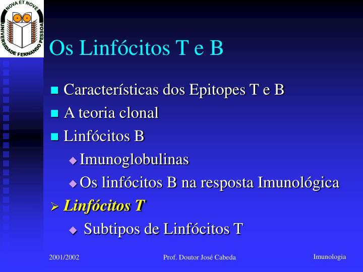 Os Linfócitos T e B