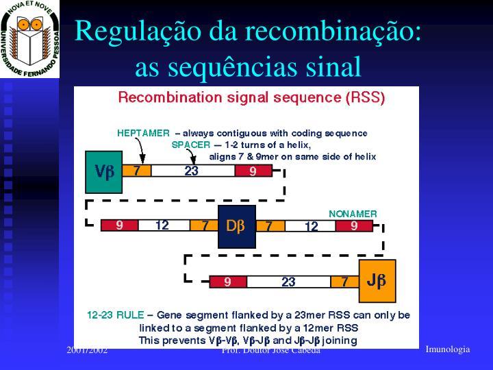 Regulação da recombinação: