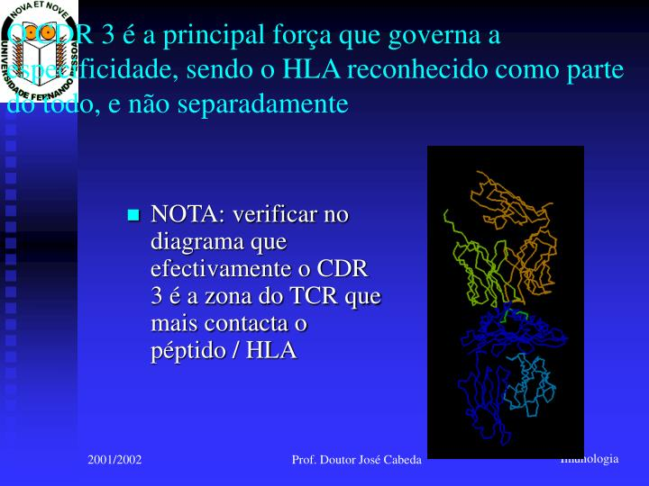 O CDR 3 é a principal força que governa a especificidade, sendo o HLA reconhecido como parte do todo, e não separadamente