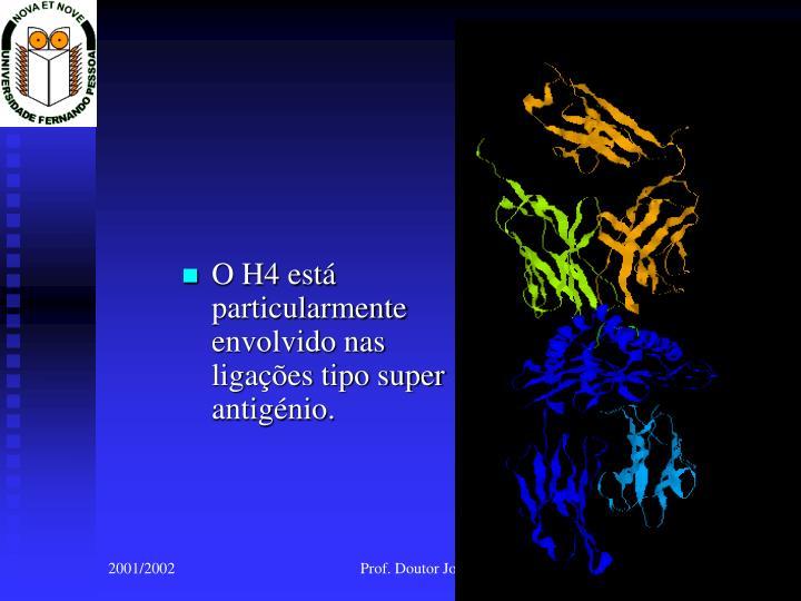 O H4 está particularmente envolvido nas ligações tipo super antigénio.