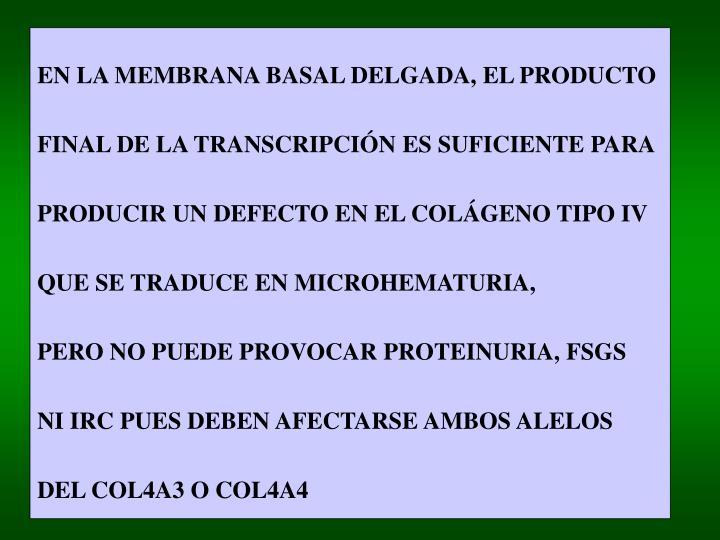 EN LA MEMBRANA BASAL DELGADA, EL PRODUCTO
