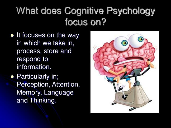 What does Cognitive Psychology focus on?